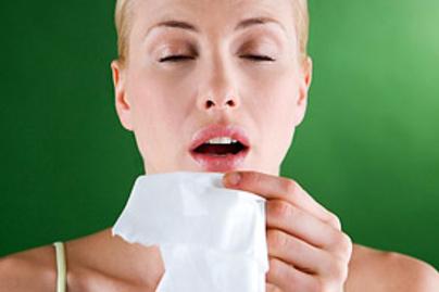 allergia lead