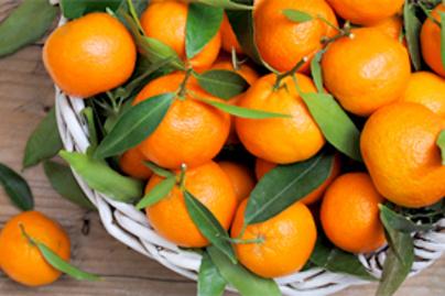 mandarinok lead