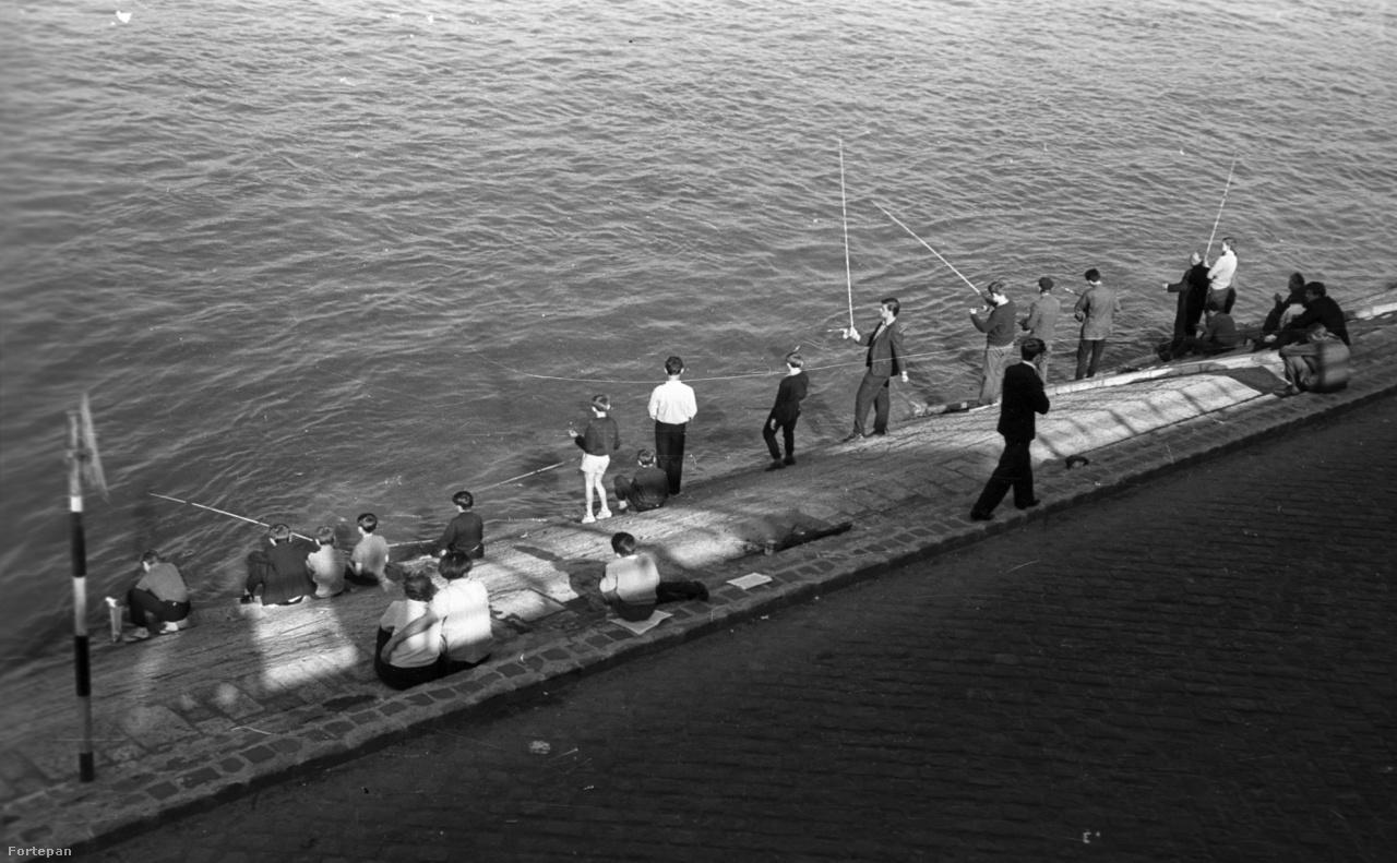 A budai alsó rakpart a Szent Gellért térnél, 1967                         Pecázók és kibicek a ma már nehezen megközelíthető, éppen ezért alig használt partszakaszon. Ha valaki életét kockáztatva átverekedi magát az autók között, ma ugyanitt egy vízparti sütögető helyet talál: a Gerilla Grill-t a Város és Folyó Egyesület (VaLyo) pont azért hozta létre, hogy a helyet újra bekapcsolja a város vérkeringésébe.