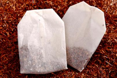 teafilter lead