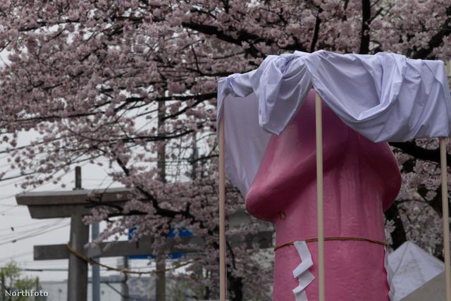 A meleg közösségeket támogató rózsaszín fallosz
