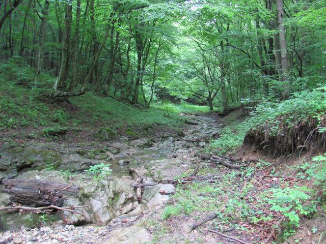Vadregényes tájakon túrázhatunk a kevéssé ismert Zselic lankás dombjai között