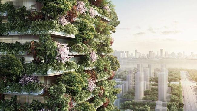 Fákkal borított felhőkarcolók városi Tarzanoknak