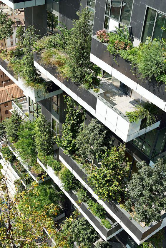 A bent élők erdőben érezhetik magukat - Milánó