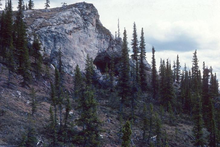 A Bluefish-folyó egyik barlangja, ahol a leleteket találták.