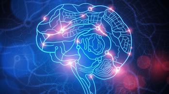 Mini agyak is szerepet játszhatnak a fájdalomérzet kialakulásában