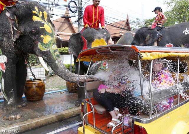 Az elefántokat szépen kifestik az ünnepre
