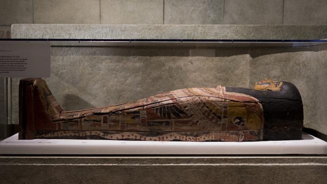 Felnőtt pizsamaparty New York Természettudományi Múzeumában