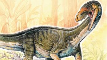 Négy lábon jártak a dinoszauruszok ősei