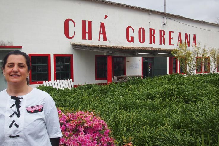 Madalena Mota és testvére igazgatja a bő százharminc éves Chá Gorreana teaültetvényt. Ők már a hatodik generáció (a háttérben nem teacserjék láthatók)