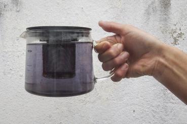 Azori trükk: helyi zöld tea plusz hatvan fokos hőforrás vize együtt lila teát eredményez