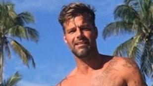 Ricky Martin realityceleb lesz