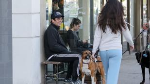 Benicio Del Toro leplezetlen stírölése már-már zavarba ejtő