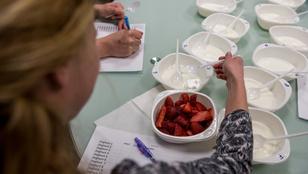 Teszt: Melyik natúr joghurtból készítsünk gyümölcsjoghurtot?
