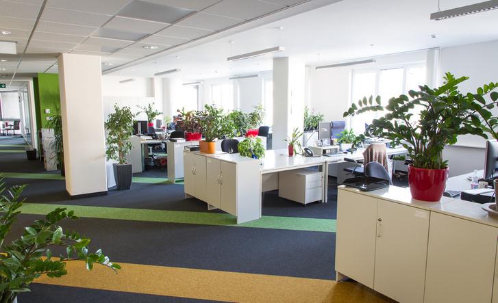 CityZen – magas színvonalú irodai kialakítás