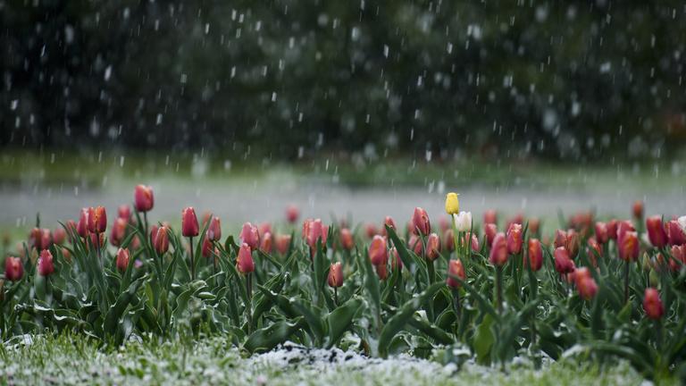 Marad az enyhe téli idő, de pénteken már 13 fok is lehet