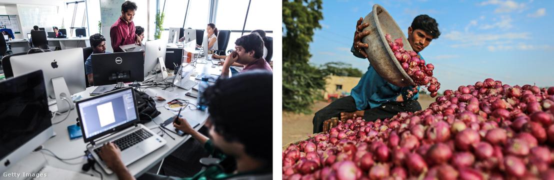 Balra: indiai fejlesztők dolgoznak egy ételszállítós startup mobil-alkalmazásán Jobbra: Hagymát pakol egy földműves Umranában.