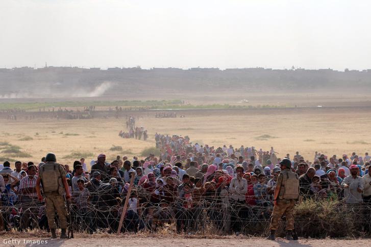 Menekültek érkeznek Szíriából a török határra 2014-ben