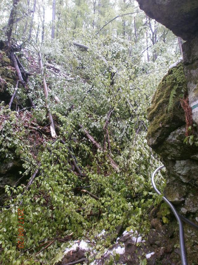 Súlyos károkat okozott a hideg és a hó a Rám-szakadékban