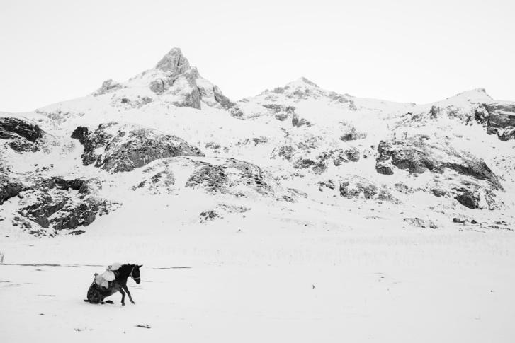 A Tájkép kategória és az  Az Év Fotósa díj nyertese Frederik Buyckx Fehér Világ című sorozatával