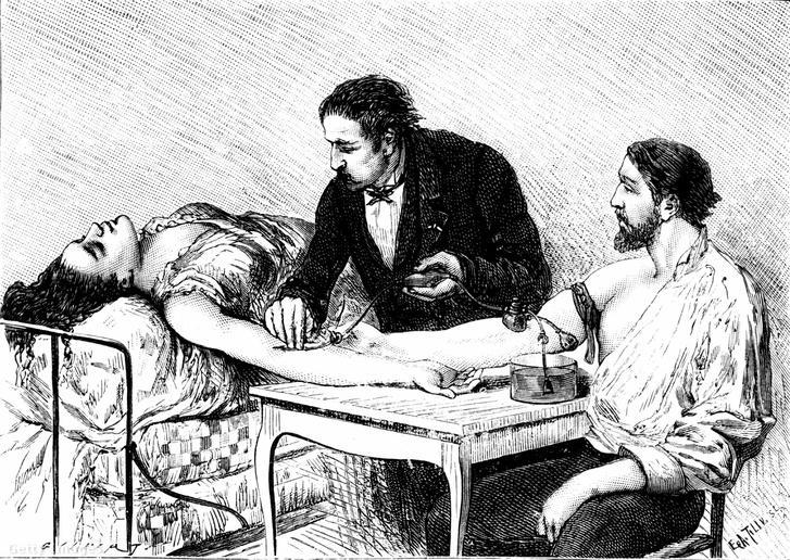 Véradás a XiX. század végén
