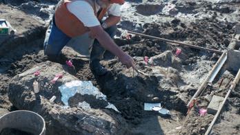 Már 130 ezer éve is élhetett ember Észak-Amerikában