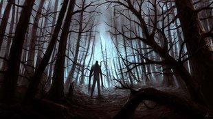 Valami követ az erdőben