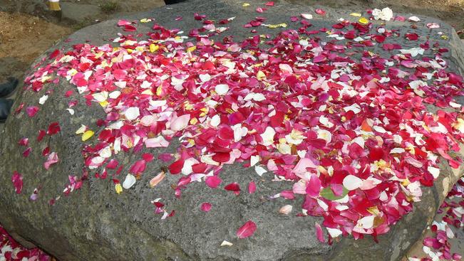 Júniusban bárki tesztelheti a badacsonyi rózsakő erejét