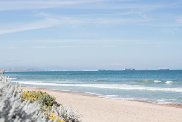 Playa La Dehesa, Valencia