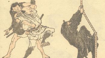 Nindzsakutató központot alapítanak Japánban