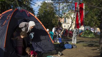 Felszámolják az illegális belgrádi sátortábort