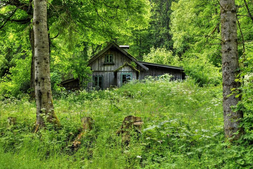 Mesekunyhó az erdő szélén vagy épp egy erdei kis tisztáson, ahová jócskán jut napfény is.