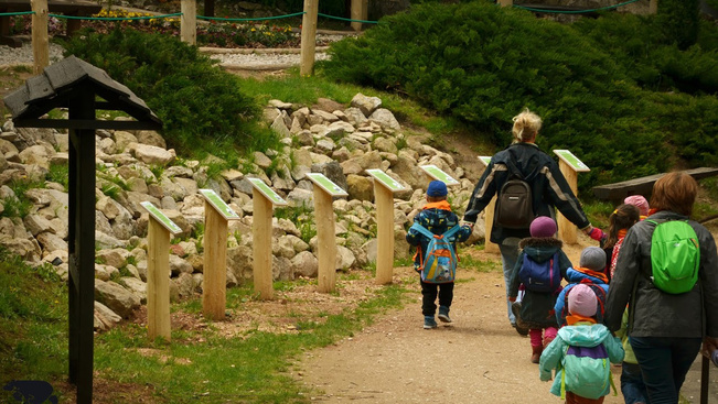 Madárbarát tanösvény nyílik a Budakeszi Vadasparkban