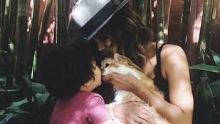 Halle Berry és családja elhunyt cicájukat gyászolják