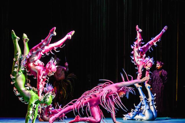 Aki ismeri a Cirque du Soleil előadásait, az szinte elvárja a sajátos és színpompás látványvilágot, a kosztümökben is