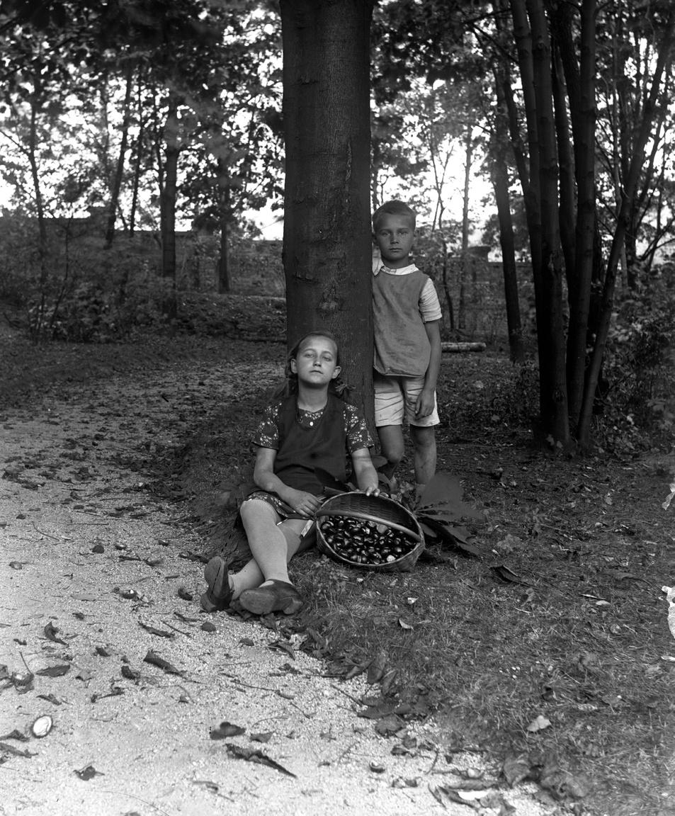 Őszi idill az egykori Cs. és Kir. Gyalogsági Hadapródiskola kertjében (Hidegkúti út 23.), 1926Vajon milyen lehetett egy ilyen hatalmas kertben felnőni, ősszel gesztenyét, nyáron almát szedni, naphosszat százszorszépek között heverni, fára mászni és élvezni a falakkal határolt szabadságot? Szerdahelyi Márk, a komoly tekintetű kislány unokája azt mondja, dédszülei valamikor 1910 körül költöztek a Hadapródiskolába (sajnos az épület, melyben laktak, az utóbbi idők rombolásának lett áldozata). Nagyanyja és az öccse is itt születtek, majd laktak egészen a húszas évek végéig a többi katonatisztcsaláddal együtt. Miközben egy Ottlik Géza nevű, 14 éves úrifiú a katonai reáliskola tanulója volt.