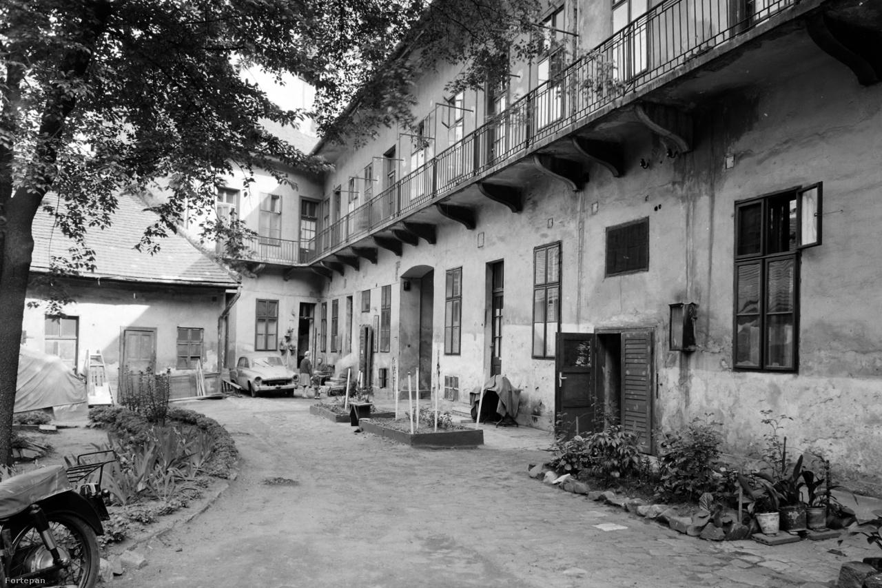 Bérházudvar keveredő funkciókkal valahol Budapesten, 1968-banMinden együtt: elkerített ágyás a karózni való palántáknak, néhány árválkodó cserepes növény, autóroncs- és motorparkoló, festőműhely és az összes betévedővel szóba elegyedő idős néni.