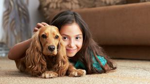 Ezért érdemes kutyát tartani a családban