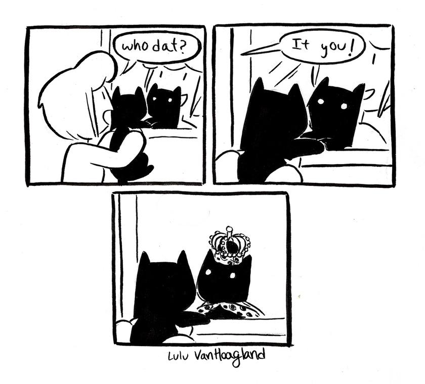 """""""Ki az? Te vagy!"""" - És amit a cicád lát a tükörben."""