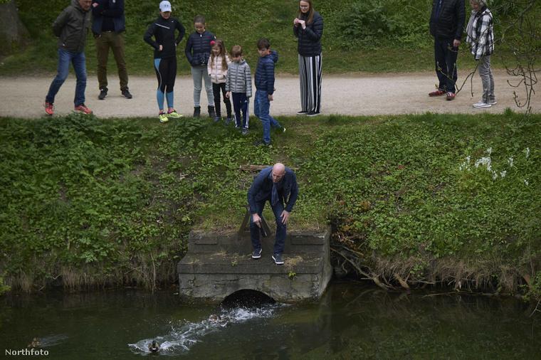 A testőrök vízre bocsájtják a kacsákat.