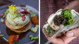 9 érdekesség, amit megtudtunk a Gourmet Fesztiválon
