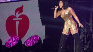 Demi Lovato elég durván utasította vissza egy rajongóját