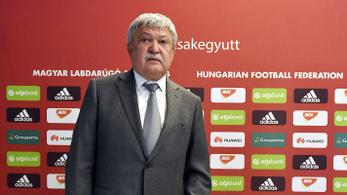 Nagy-Magyarországon is szétnéz az MLSZ épkézláb focistákért