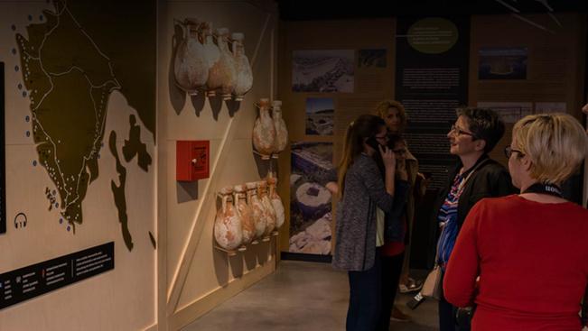 Olívaolaj-múzeum nyílt a horvát tenger partján