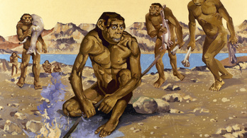 Az ősemberek is paleo diétán éltek?