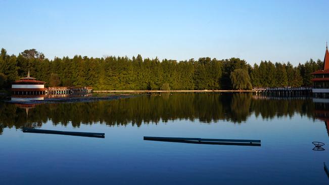 Átfogó természetvédelmi programmal újul meg a Hévizi-tó és környéke