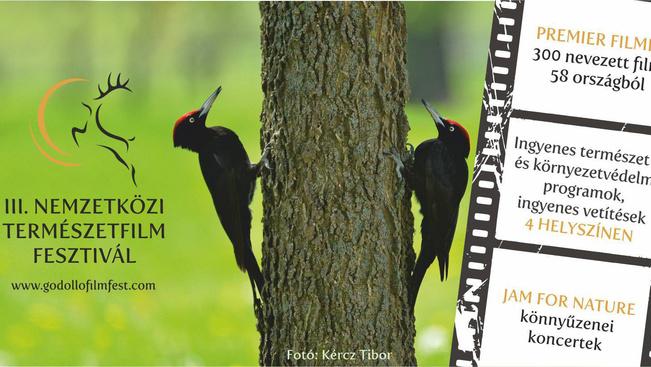 A természet rajongói közel száz filmet nézhetnek ingyenesen Gödöllőn