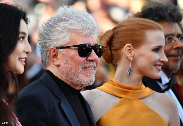Fan Bingbing, Pedro Almodóvar, Jessica Chastain és Gabriel Yared, a 70. cannes-i filmfesztivál zsűrijének tagjai