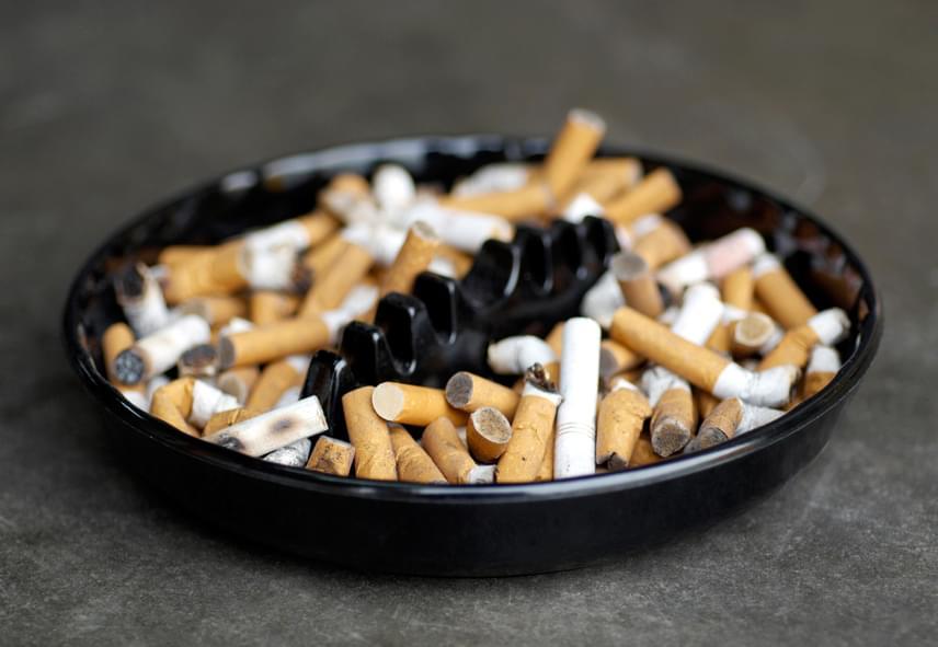 A dohányzás számos ok miatt káros az egészségre, többek között az alvászavarok kialakulásával is szoros összefüggést mutat, legyen szó az éjszakai felébredésekről, a felületes alvásról, álmatlanságról. Ha szeretnél többet tudni a témáról, illetve kíváncsi vagy, lefekvés előtt mennyivel nem szabad rágyújtani, kattints ide!