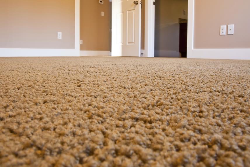 Felfrissítheted a szőnyegeidet, ha beszórod őket enyhén kukoricakeményítővel, hagyod állni egy kicsit, majd egyszerűen felporszívózod a port a további szennyeződésekkel együtt.